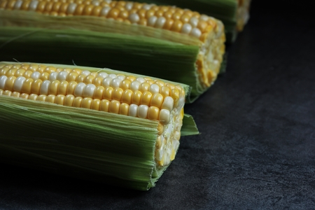 moody background: Fresh corn on the cob against dark moody background, selective focus