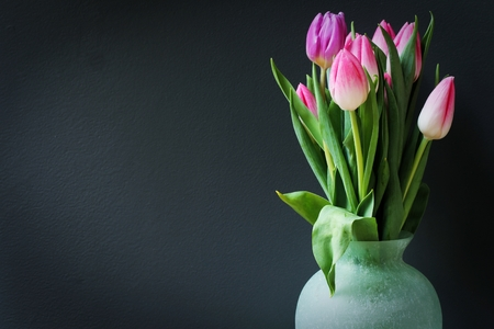 moody background: Tulip flowers  Mothers Day flowers on dark moody background, selective focus