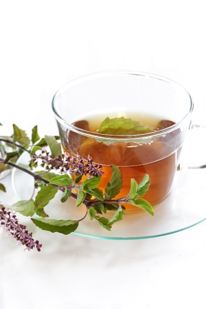 Tulsi Tea isolated on white, selective focus Banque d'images