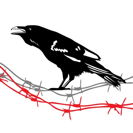 Raven Crow Stock Vector - 14777179