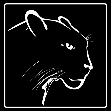 검은 색 바탕에 표범