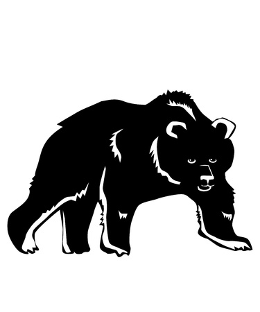 Bear on a white background  Vector