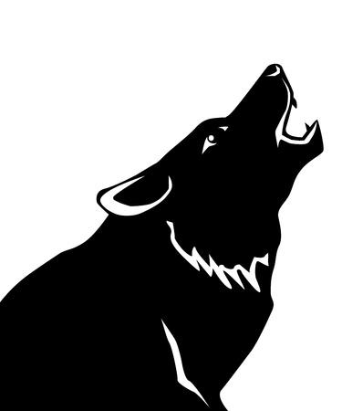 흰색 배경에 늑대