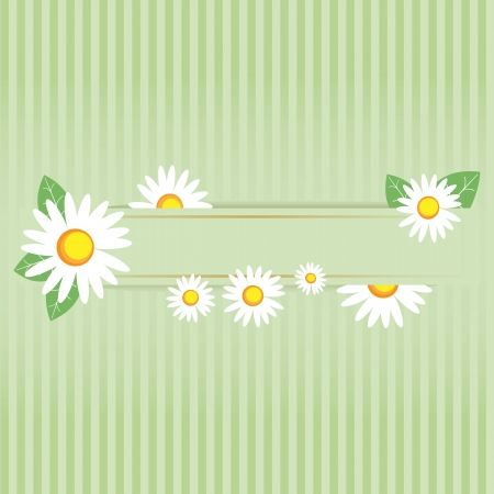 Camomile frame Stock Vector - 15207005