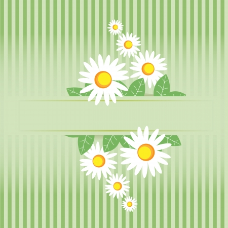 Summer meadow. Camomile frame Vector