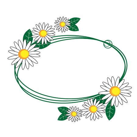 chamomile flower: Summer meadow  Camomile frame Illustration
