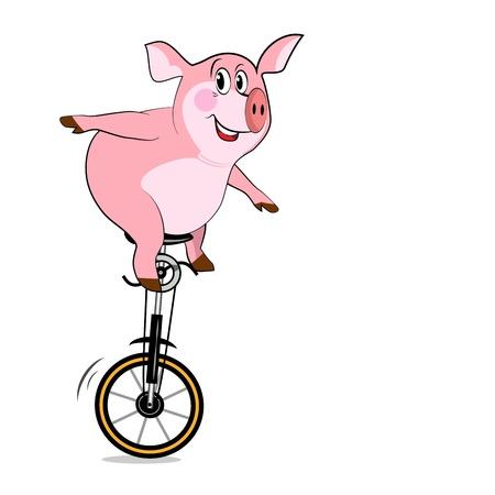 circus bike: Pig en una rueda. Bicicleta con una rueda