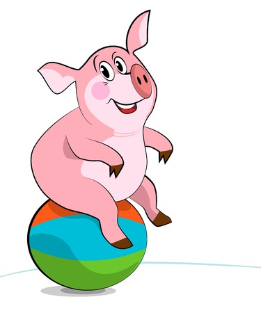 """pilates ball"": Pig exercising with a pilates ball."