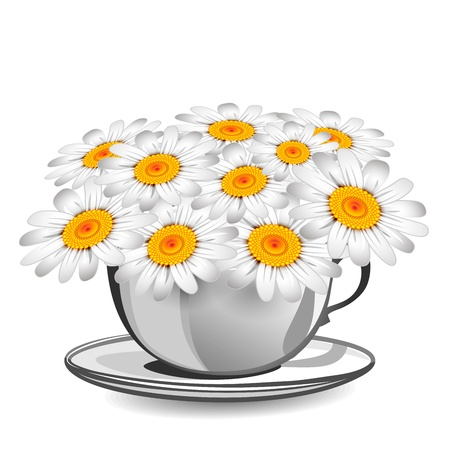 Herbal chamomile in a white cup Stock Vector - 17781700