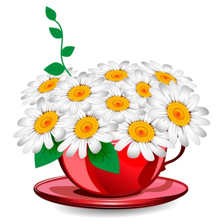 Herbal chamomile in a red cup Vector