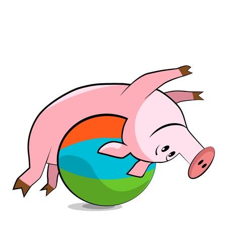 pilates ball: Pig exercising with a pilates ball.