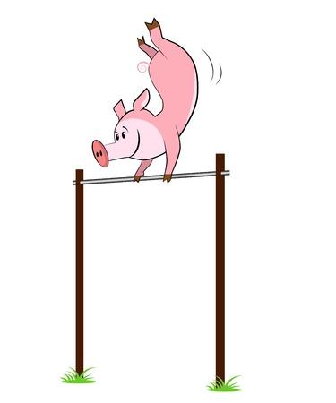 rekstok: Illustratie van geïsoleerde varken hangt aan een horizontale balk