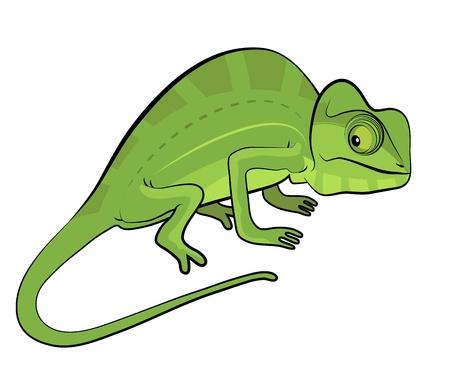 Chameleon stripfiguur geïsoleerd op witte achtergrond