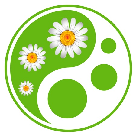 Eco labels. Green symbol concept using Yin Yang in a leaf design Vector