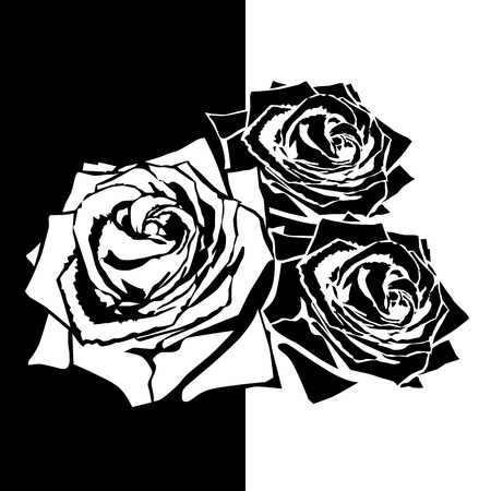 White silhouette of rose with leaves. Black background Stock Vector - 19374984