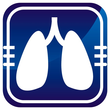 pulmones: Human organs. Lungs. Vector icon isolated