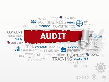 validez: Concepto de nube de la palabra de Auditor�a. conceptos ilustraci�n esign de carrera como consultor de negocio de gesti�n de las finanzas. Vectores
