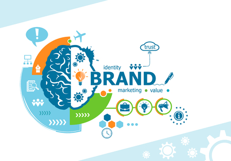 Branding related words and brain concept. Infographic business. Project for web banner and creative process.
