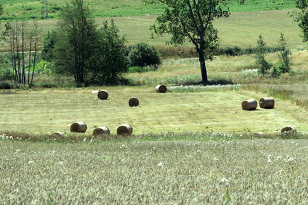 Hay Bales in Mountain Farm