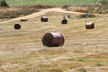 Hay Bales in Mountain Farm, Landscape, Beautiful Nature