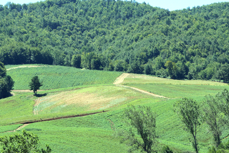 Mountain Landscape Zdjęcie Seryjne - 81452828