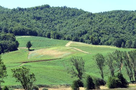 Mountain Landscape Reklamní fotografie