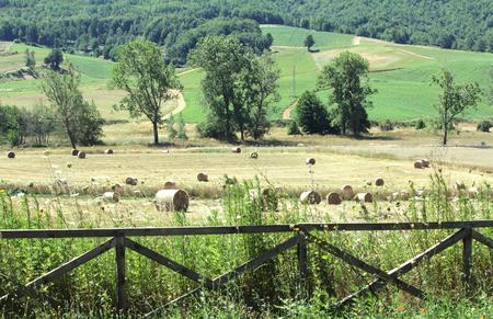 Hay Bales in Mountain Farm Zdjęcie Seryjne - 81453138