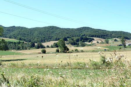 Mountain Landscape, Trees, Wild Nature Zdjęcie Seryjne