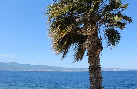 turismo ecologico: Palmera y estrecho de Messina como se ve desde Calabria, sur de Italia