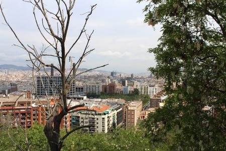 Barcelona Panorama, Panoramic View, Spain, Viewpoint