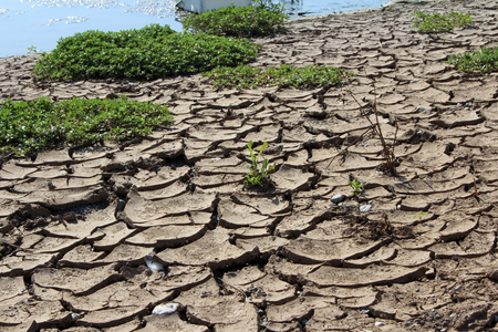 Cracked Ground, Earthquake Concept, Drought, Stock Photo