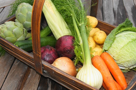 home grown: Home-grown organic vegetables freshly harvested and displayed in trug basket, artichoke, fennel, carrots, cabbage, onion, sweetcorn, potatoes, courgette Stock Photo