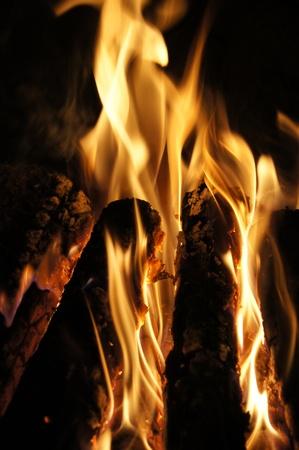 burning time: Burning Logs on Night Time Fire