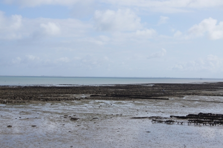 French island of Ile de Re at low tide showing the mussel, oyster and cockle shellfish beds photo