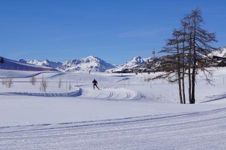 nordic ski: Cross Country skiing trail in French ski resort Montgenevre