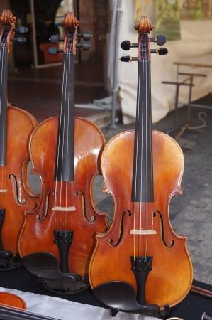 violins: Group of violins on display