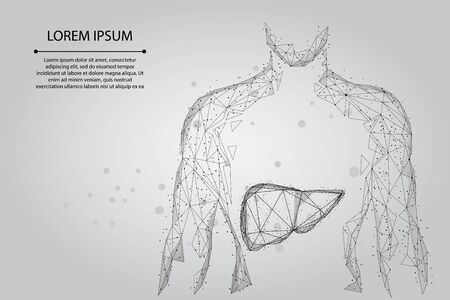 Abstract line and point human body with the liver. Healthcare, Science and Technology Vector Illustration Çizim