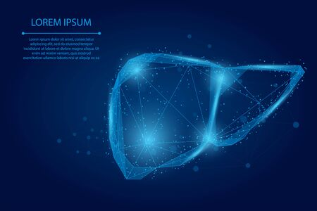 Abstract line and point human liver. Low poly Healthcare Vector Illustration
