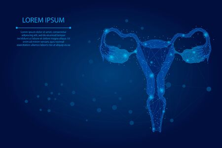 Abstract mesh line and point Ovaries. Low poly female reproductive organs uterus and ovaries health care. Polygonal vector illustration