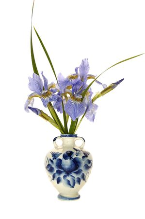 blueflag: mont�n de iris en florero aisladas en blanco