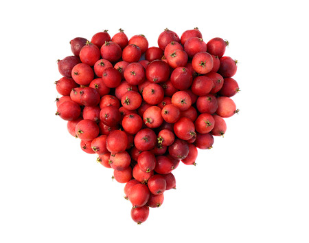 shape of heart made out of ripe small red apples photo