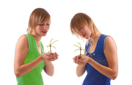 girls with small seedling of fir tree photo
