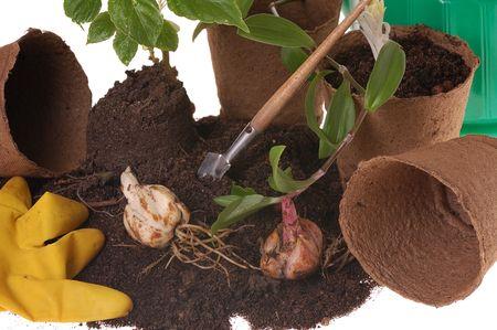 turf: lente home gardering - potting planten in turf potten