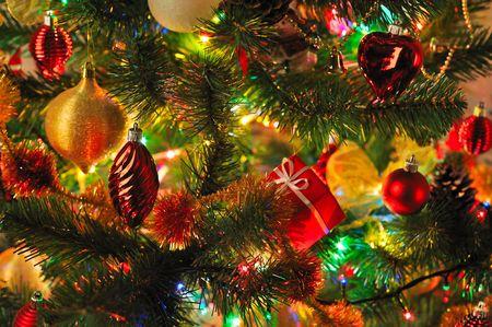 Abete di Natale con le luci colorate vicino Archivio Fotografico