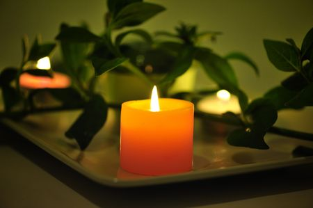 traquility: burn yellow candle with  leaves on dark green background