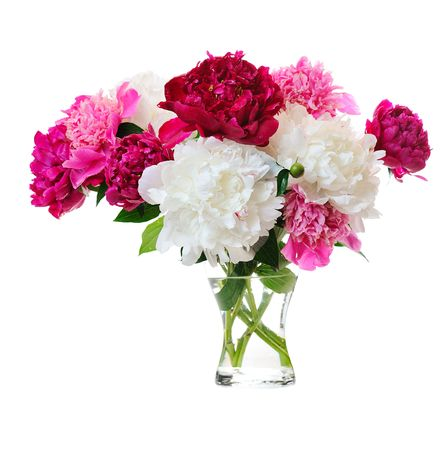 glass vase: bunch of colorful peonies in glass vase on white background Stock Photo