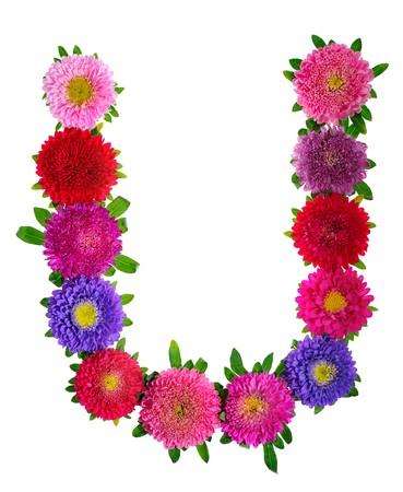 beautiful alphabet:  floral alphabet isolated on white background. letter U Stock Photo