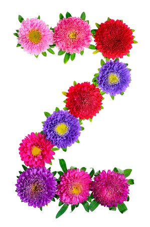floral alphabet isolated on white background. letter Z photo