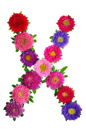 floral alphabet isolated on white background. letter X photo