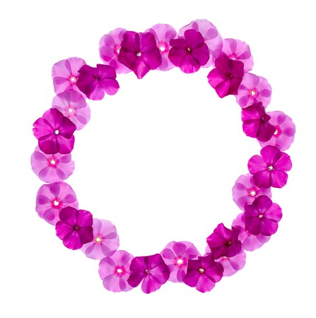 circle pink floral frame isolated on white background Stock Photo - 7849628